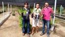 Campus Sousa desenvolve projeto de produção agroecológica de maracujá